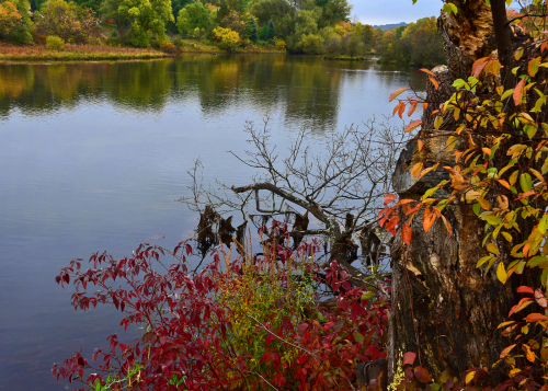 BR Mill Pond Fall