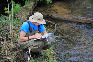 Recording data (photo courtesy of Tip of the Mitt Watershed Council).