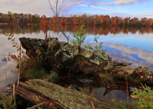 kircher-pond-early-morning-2