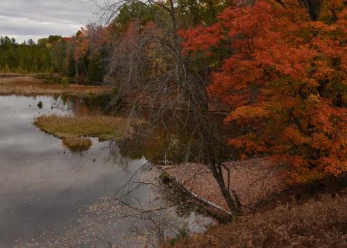 kircher-pond-southern-split-of-the-br