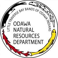 Odawa Logo